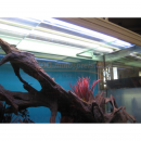 Aquarium LED Easy Universal Einbaulamp ab 60 cm...
